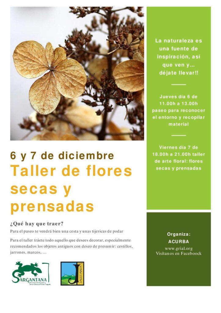 Un taller de arte floral, chocolatada, celebración de San Nicolás y mercadillo de Navidad son las propuestas de para el próximo puente festivo de la Inmaculada y la Constitución.